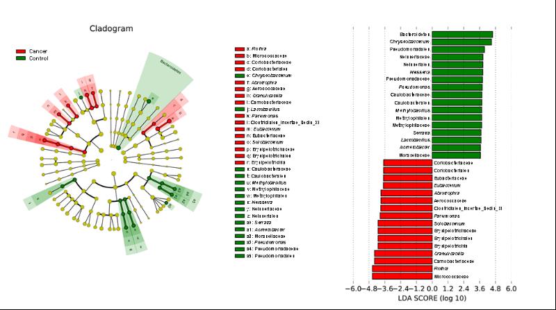 研究人员在微生物组分离分析方面取得重要进
